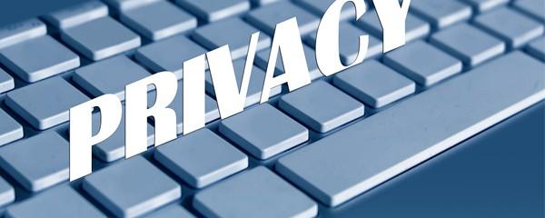 Proyecto Ley de Seguridad Privada