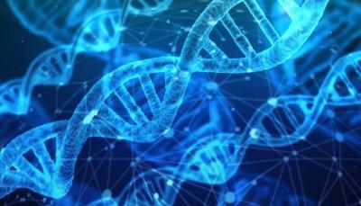 ¿Es legal la obtención de pruebas de paternidad (ADN) por un detective?